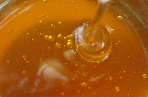 hunaja makeuttaa inkivääriteen