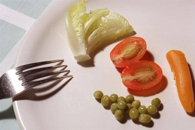 Dieetit