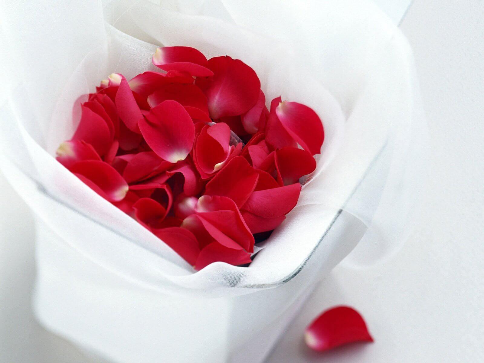Ruusun-terälehdet