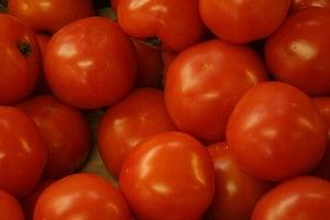 koita luonnollista nesteenpoistajaa tomaattia