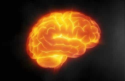 7 keinoa pitää huolta aivoista