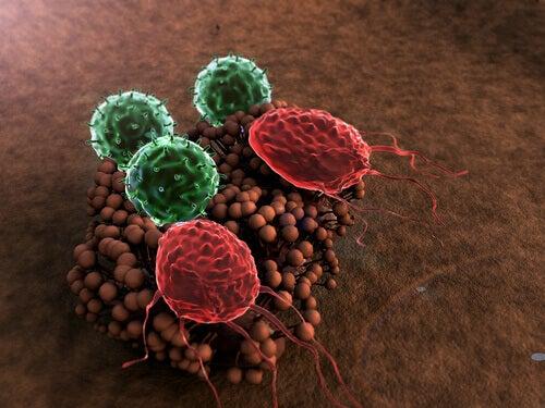 Heikentyneen immuunijärjestelmän oireet