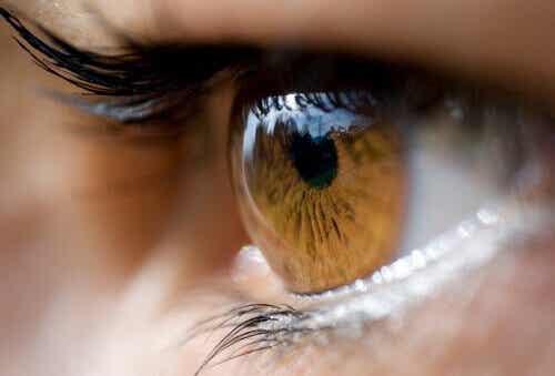 Mitä silmien väri kertoo terveydestäsi