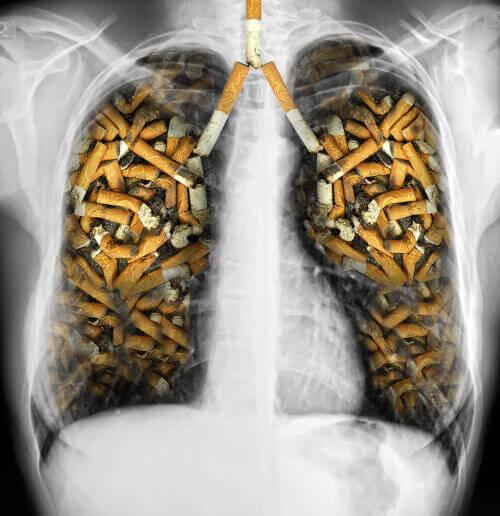 Keuhkot-savukkeet