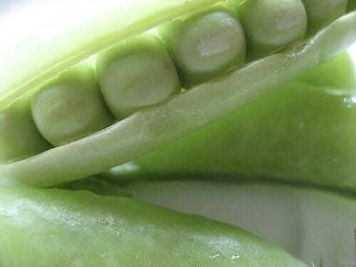 Palkokasvit sisältävät runsaasti kuitua ja proteiinia.