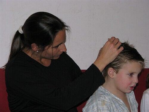 äiti tutkii pojan hiuksia