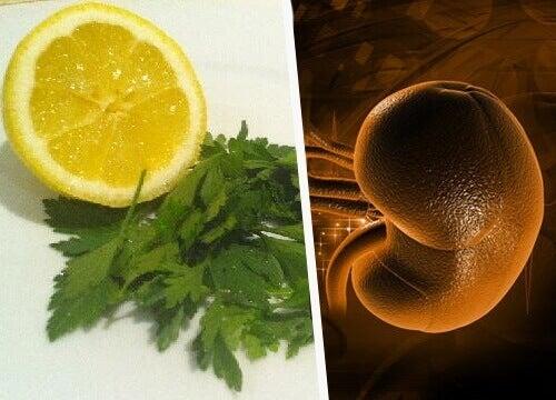 sitruuna ja persilja munuaisten puhdistukseen