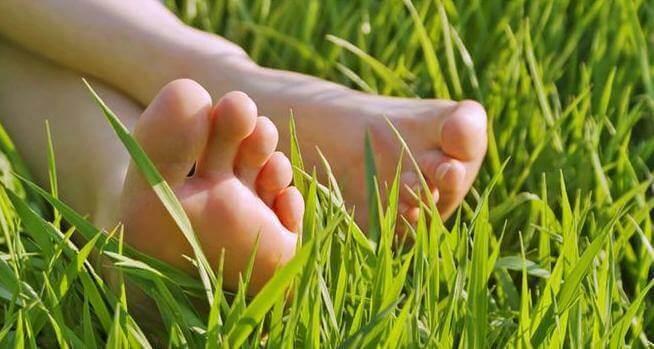 jalat nurmikossa