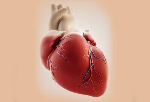 Sydänkohtauksen oireet naisilla