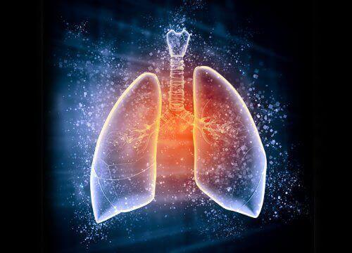 puhdista keuhkot