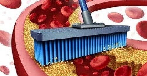 10 ruokaa verisuoniston puhdistamiseen