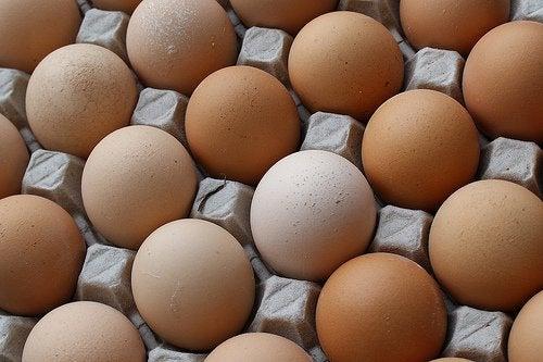 Vahvista kynsiä kananmunan kuorien avulla.