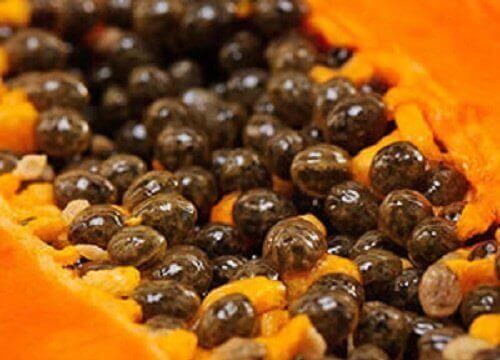 Löydä 5 huikeaa hyötyä papaijan siemenistä