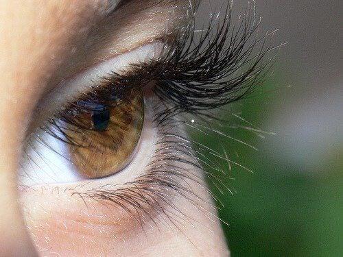 silmäripset