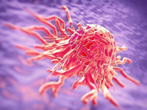 Syöpäsolu
