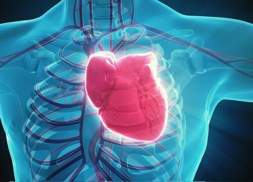 Sydankuva pistävä rintakipu