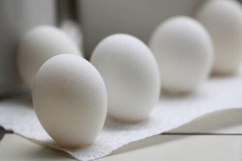 Käytä kananmunan kuoria koiran ripulin hoitamiseen.