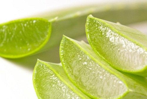 Aloe vera auttaa närästyksen aiheuttamaan polttelun tunteeseen.
