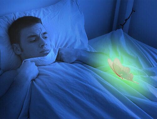 Mies ja perhonen sängyssä