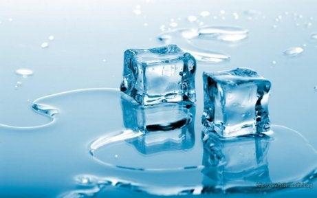 hoida mustelmat jäällä