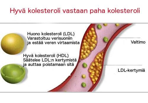 Hyvä ja paha kolesteroli