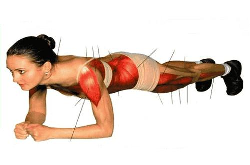 """""""Lankku"""" - mahtava lihasliike koko vartalolle"""