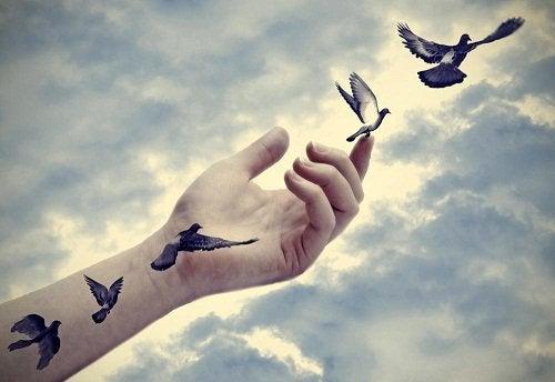 Linnut lentävät onnellisesti vapauteen