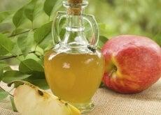 omenaviinietikka1