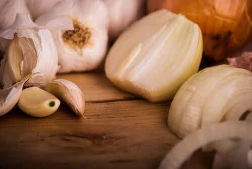 10 luonnollista antibioottia