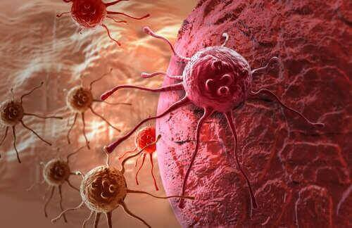 syöpäsolun kehitys