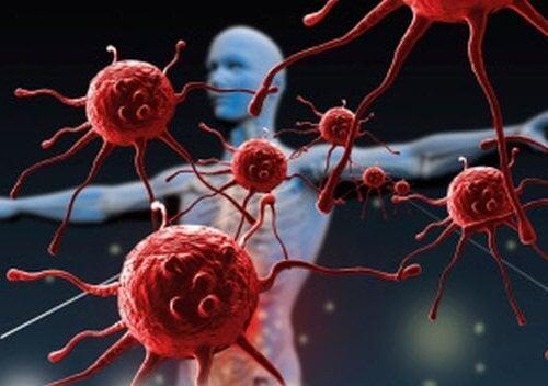 Ihminen ja solut
