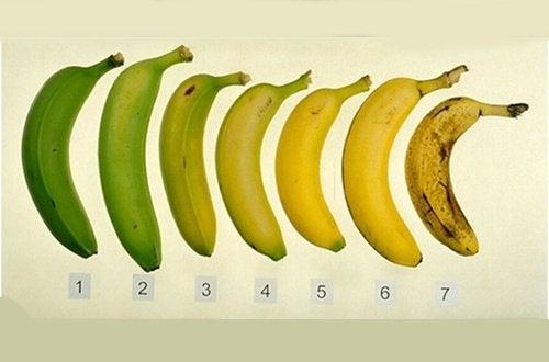 Milloin banaani on terveellisimmillään: raakana vai kypsänä?