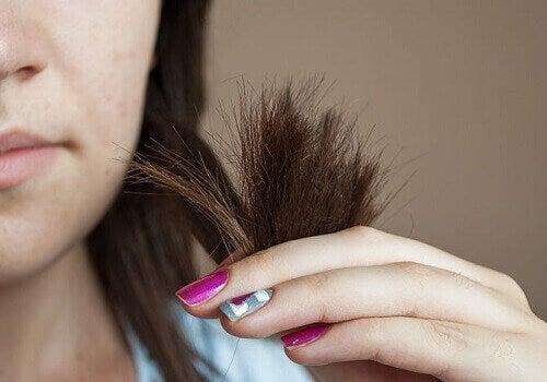 Leikkaa hiusten latvat säännöllisin väliajoin.