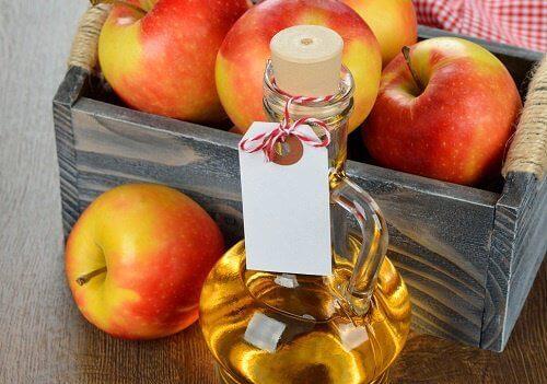 Kärpäset hus omenaviinietikan avulla