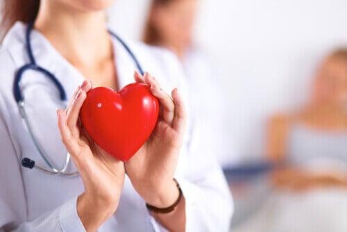 Lääkäri pitelee sydäntä