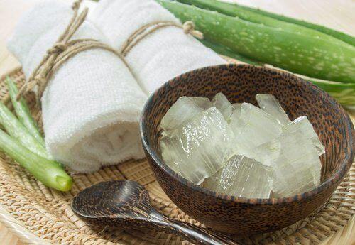 Aloe vera auttaa kosteuttamaan päänahkaa.