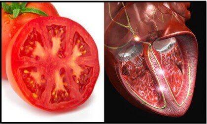kehonosia muistuttavat ruoat: tomaatti ja sydän