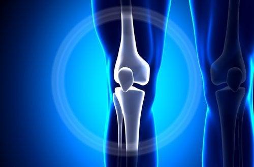 kefir auttaa osteoporoosia