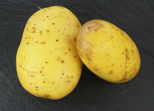 perunaa raskausarpiin