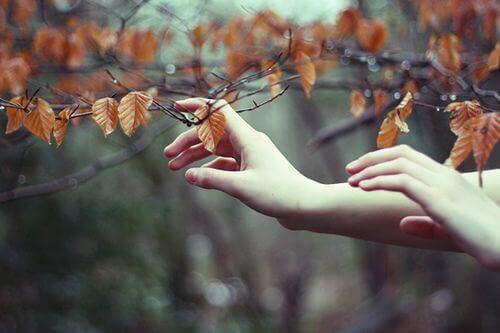kädet koskettavat syyslehtiä