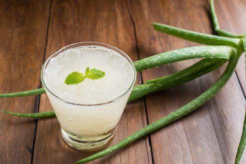 tulehduksia vähentävät juomat: Aloejuoma