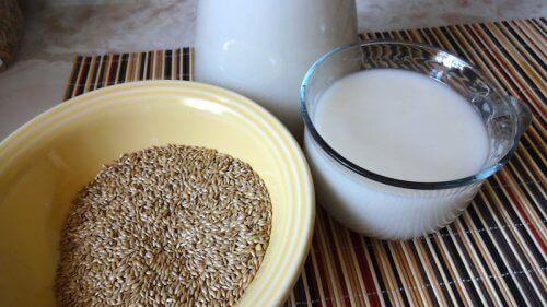 Kanariansiemenet ja maito