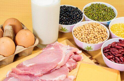 Proteiinipitoiset ruoat edistävät kehon kykyä polttaa rasvaa