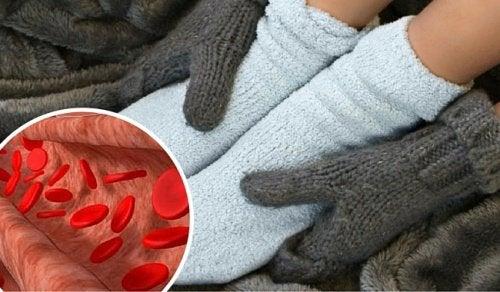Verenkierron vilkastaminen ja tulehtuneisuuden hoito luonnollisesti