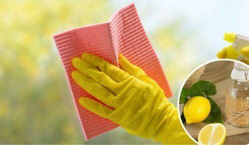 Lasipintojen ja ikkunoiden puhdistus luonnontuotteilla