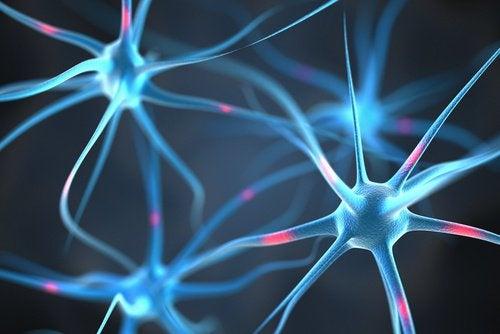 uuvuttavat ihmiset tappavat aivojen neuronit