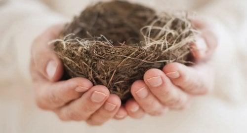 1-empty-nest