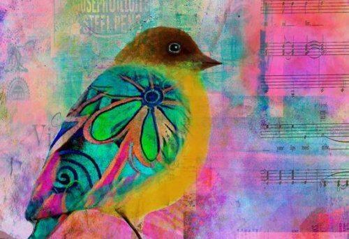 Värikäs lintu