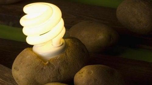 Näin teet perunasta valon