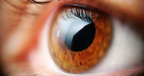 5 merkkiä silmien huonosta kunnosta